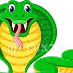 ヘビは足がないのに俊敏に動けるのはなぜ!なくなった理由!